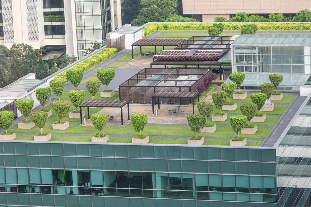 avantages toit vert