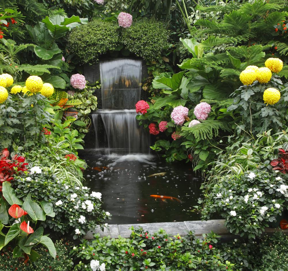 bassin-printemps