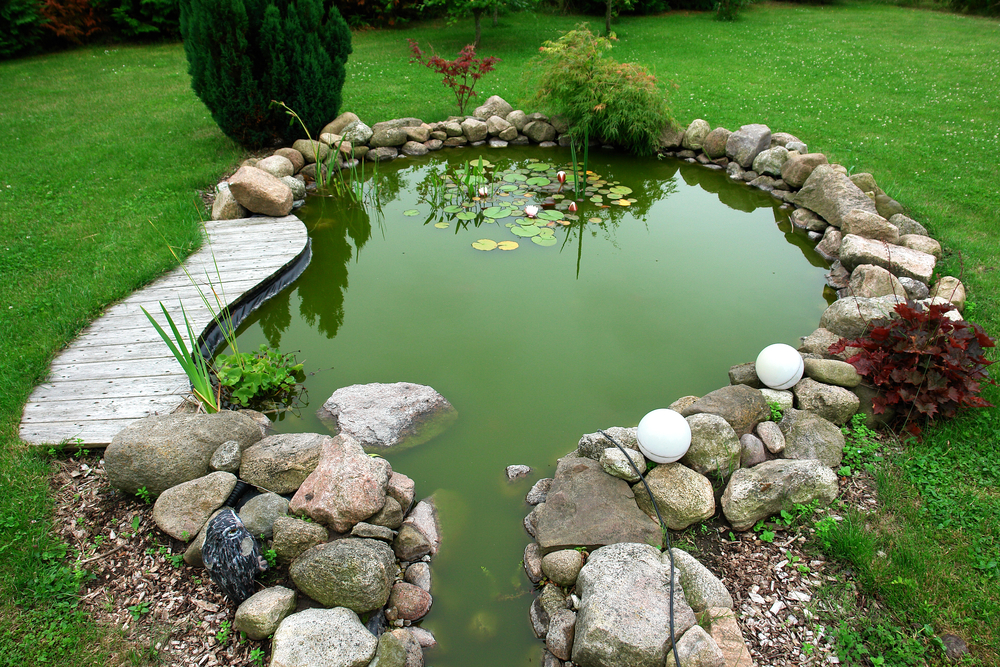 forme de bassin