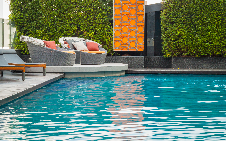 piscine paysagiste