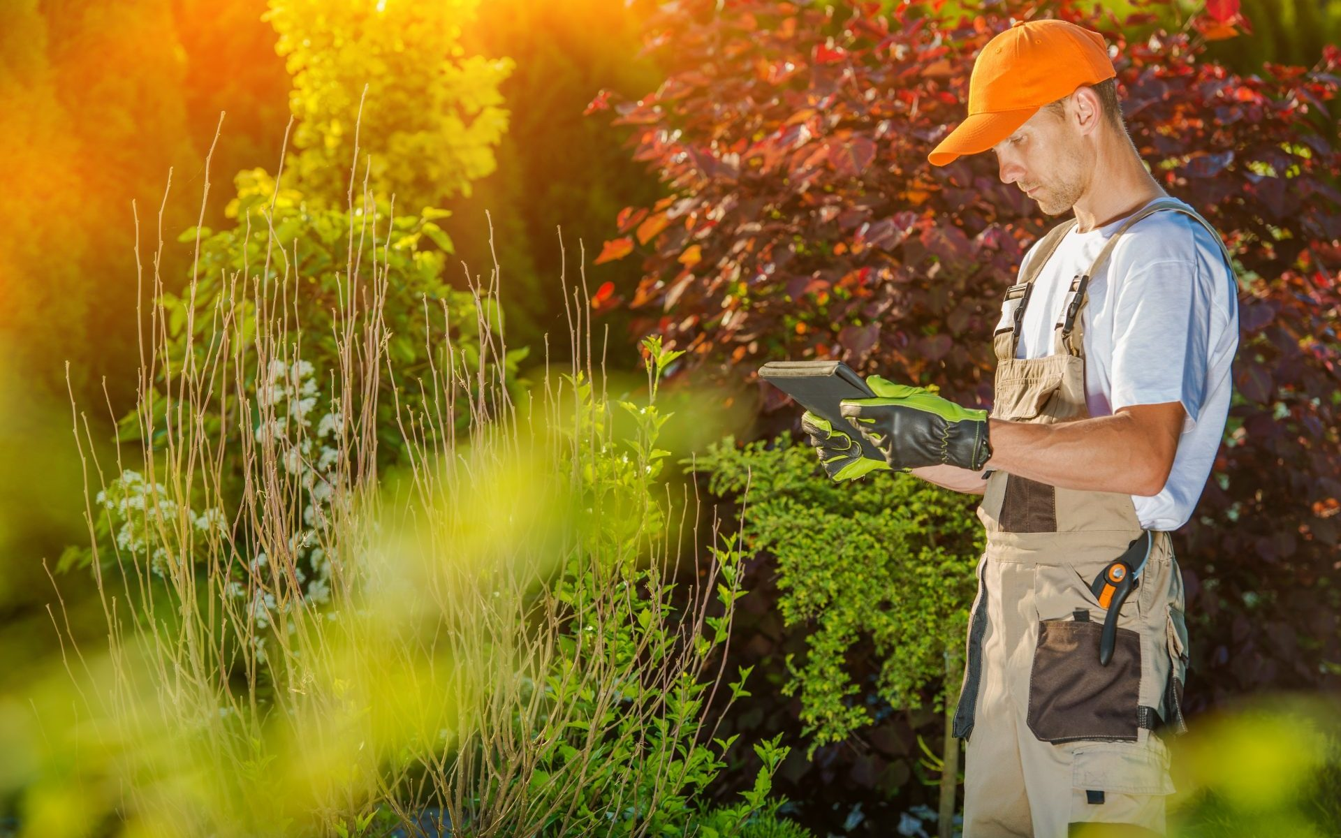 paysagiste-jardin