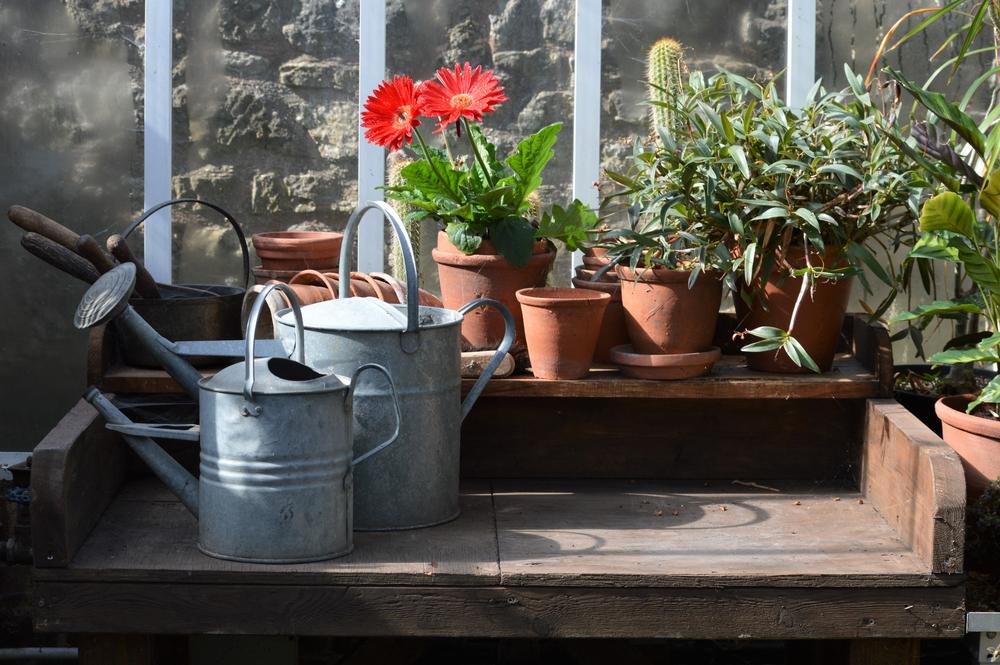 Accessoires de serre jardin