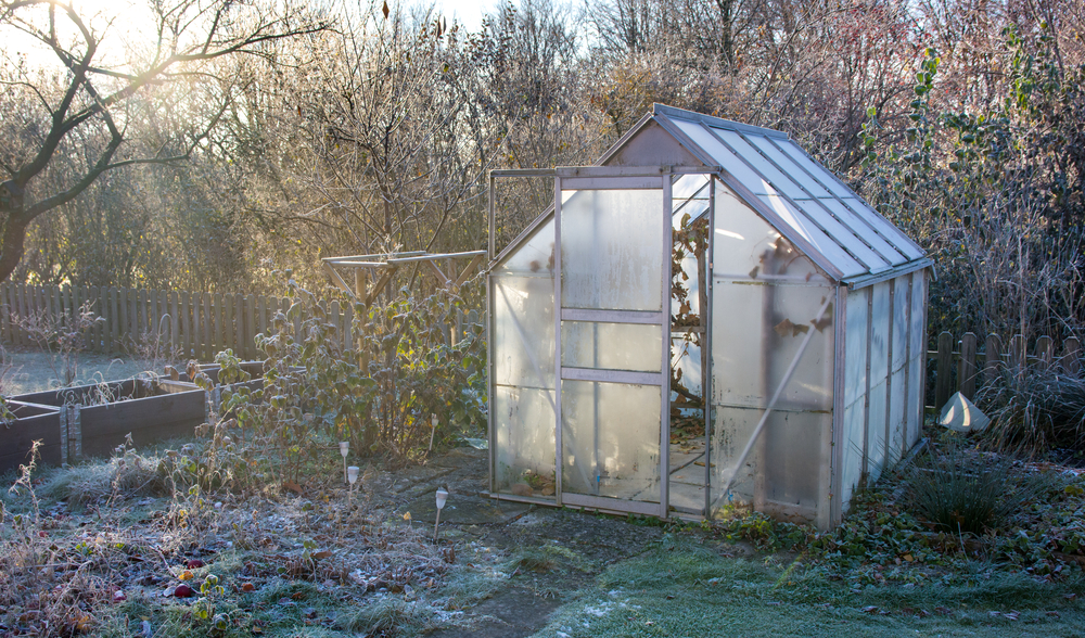 Isoler sa serre de jardin